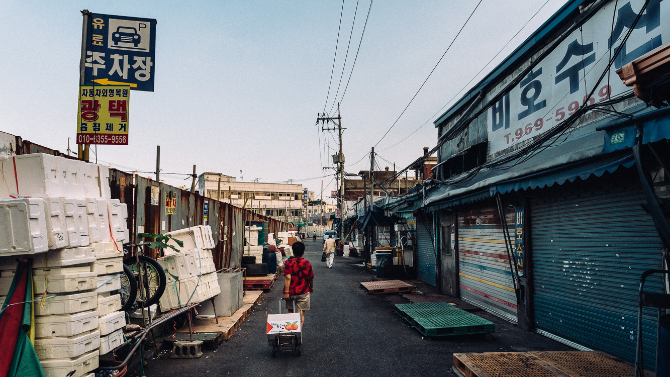 Seoul Documentary Photographer