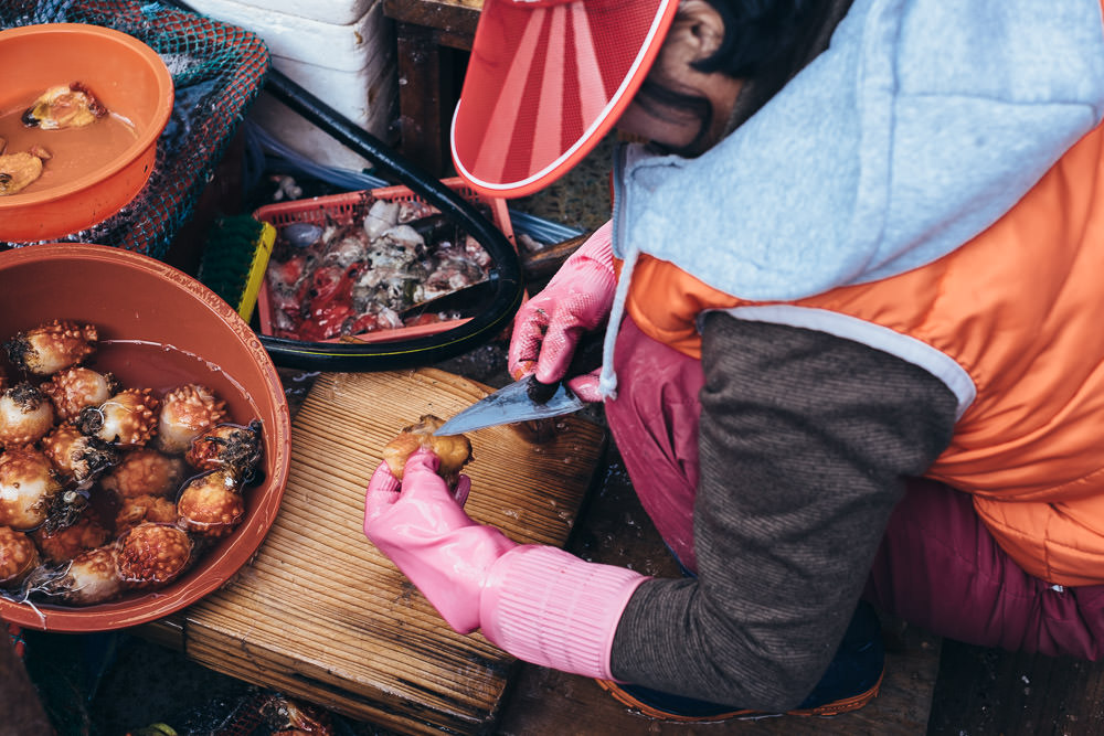Preparation - Tongyeong, South Korea
